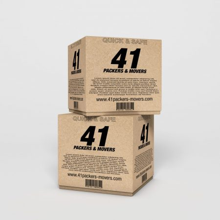 CARTON PACKAGE DESIGN